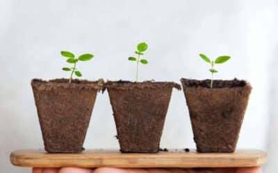 Wil jij jouw best passende groeistrategie weten?